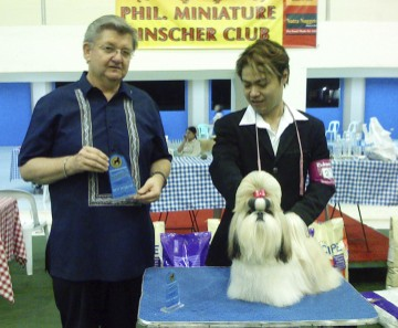 """Carrie"" - BIS-lb, Group Winner Champion Artemis Born Beyond Supreme"
