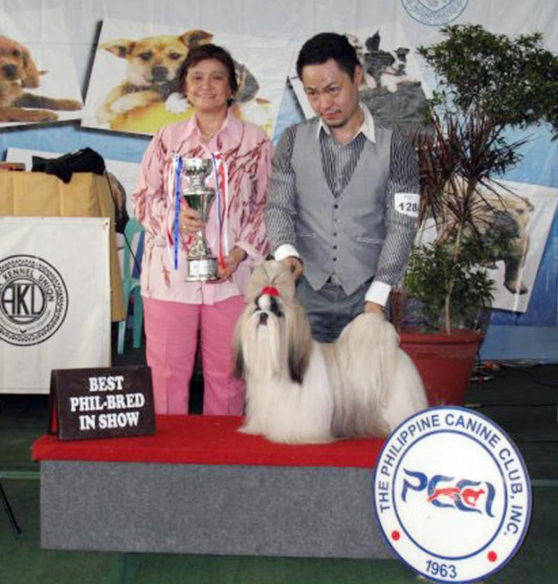 """Romeo""- BIS,BIS-LB,BPIS Hall of Fame,Grand Champ Artemis Fabulous Marvelous"